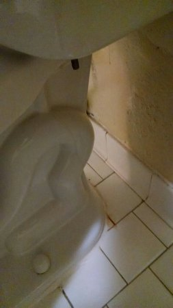 Covington, TN: Well we know behind the stool has not been cleaned since it was put in the bathroom.