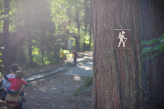 Hiking Trail to Nevada City