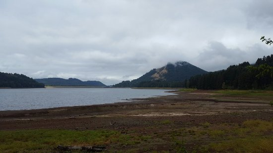 Cottage Grove, Oregón: 20160907_102816_large.jpg
