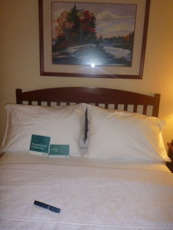 Homewood Suites by Hilton Kansas City Airport Photo