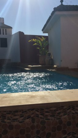 Riad d'Or: On the left there is another wall. Tiny pool