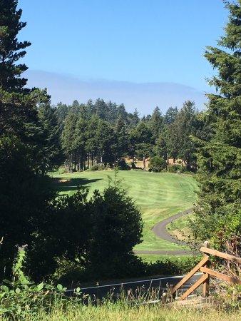 เกลนีเดนบีช, ออริกอน: Fantastic golf course and such a beautiful setting! The golf pro & staff were really wonderful a