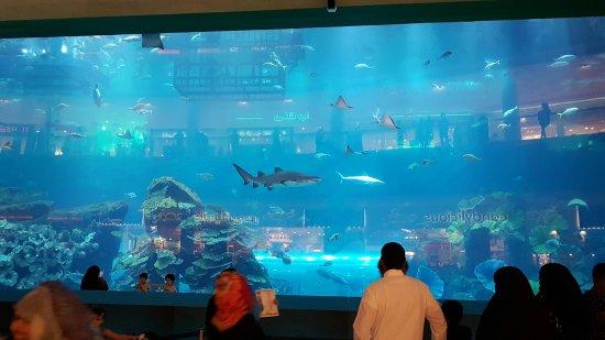 Cirque le Soir: Dubai mall