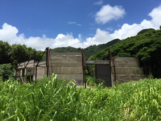 Kaneohe, Havai: ジェラシックパークで使ったセットです。