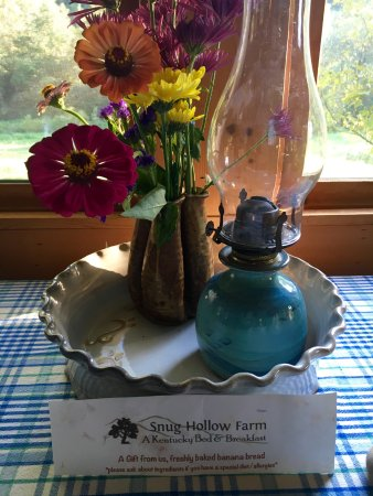 Snug Hollow Farm Bed & Breakfast 사진