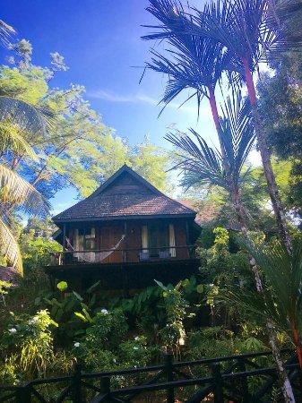 Sepilok, Malezya: photo3.jpg