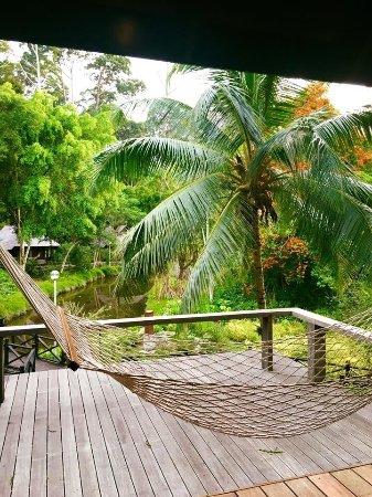 Sepilok, Malezya: photo4.jpg