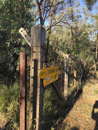 Possum Park: photo2.jpg