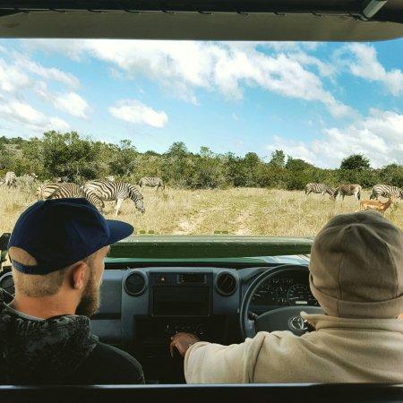 Sidbury, Νότια Αφρική: IMG_20160914_135315_large.jpg