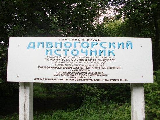 Divnogorye, Russland: Источник памятник природы