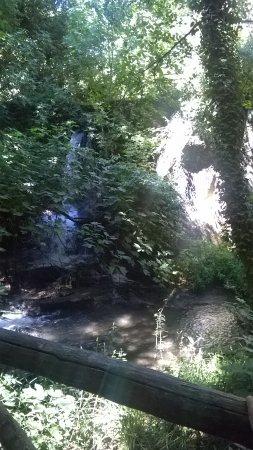Mazzano Romano, Italia: Scorcio della cascata piccola