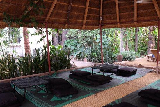 Auberge Djamilla: Jardin, Paillote