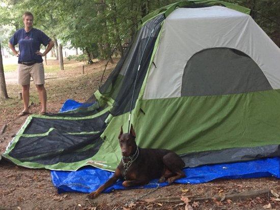 Arkansas: photo0.jpg