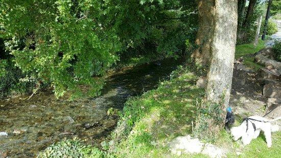 Machynlleth, UK: IMG-20160916-WA0007_large.jpg