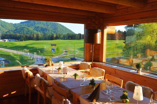 Smlednik, Slovenia: Evergreen restaurant