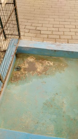 Fußbecken fußbecken zum pool picture of belvedere s p a