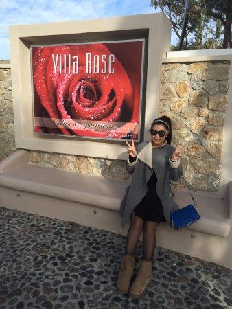 Villa Rose Photo