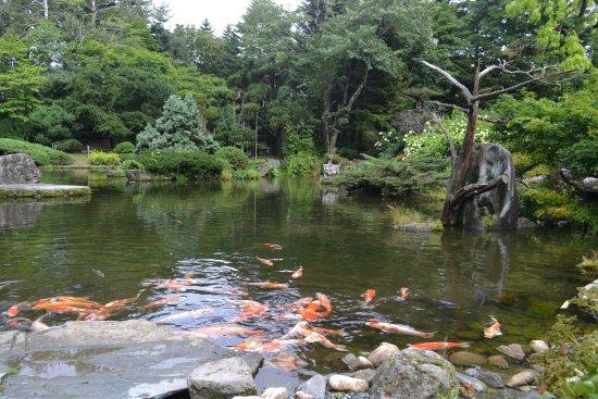 Manabe Garden : 和風のお庭もあります