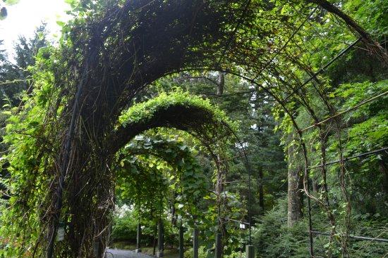 Obihiro, Japão: 広くて解放感があります