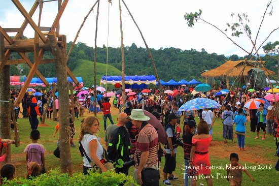 Doi Mae Salong: Swing festival 2016