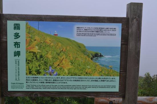 Hamanaka-cho, Japan: 風景はあまり見えなかったので看板で。