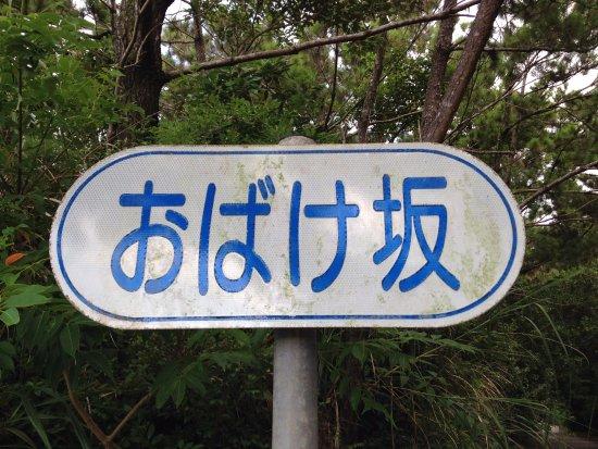 Obakezaka: ネーミングがいいよね