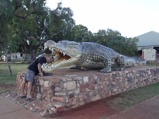 Normanton, أستراليا: The Croc 