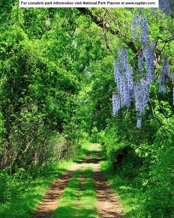 Fort Washington, MD: Marsh Boardwalk Trail