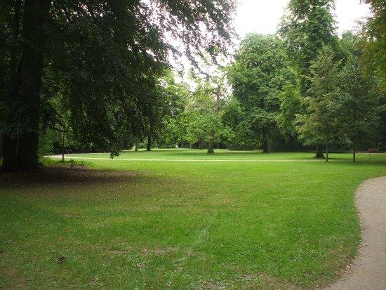 Nid de cigognes picture of parc de l 39 orangerie for Parc des expo strasbourg
