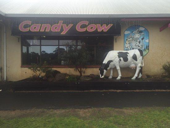Cowaramup, Australien: photo1.jpg