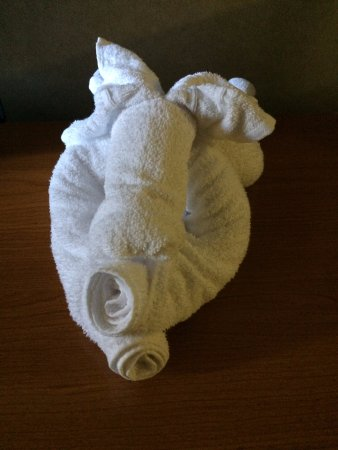 Super 8 Kingston: Towel Friend!