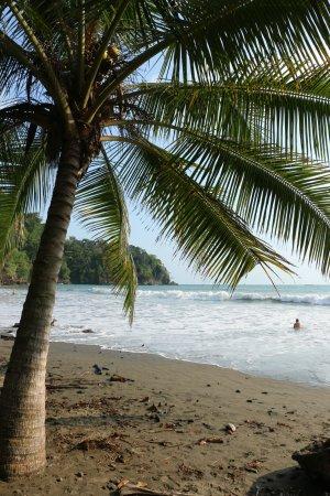 Ballena, Коста-Рика: Beach view