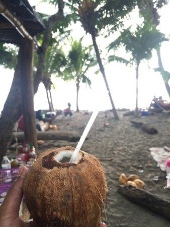Ballena, Costa Rica: Coconut