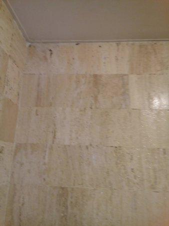 San Francisco Toluca Hotel: paredes con hongos