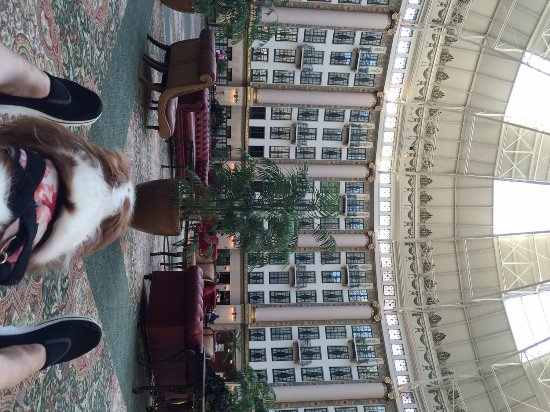 West Baden Springs, IN: Enjoying the atrium