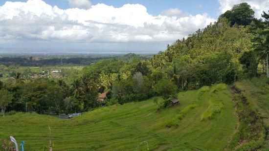 Bali Mika Tour -Tur ke Dataran Tinggi Kintamani