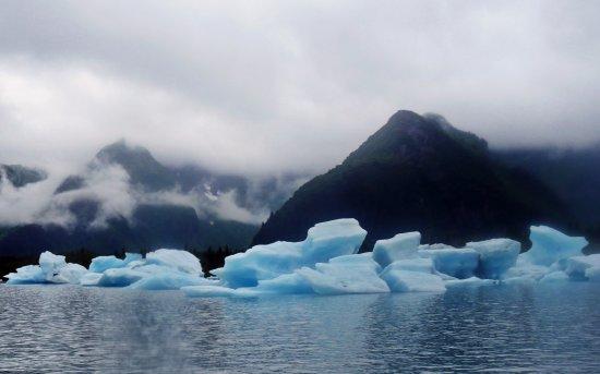 Bear Glacier : very scenic