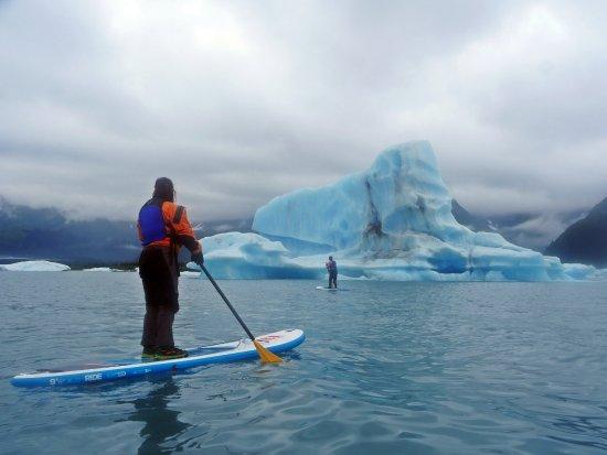 Bear Glacier : bring a camera