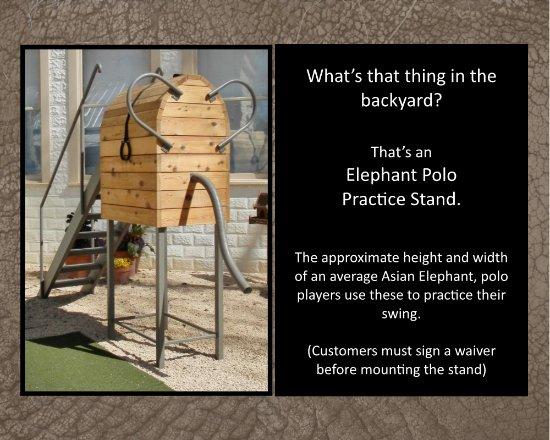 Comfort, Teksas: Elephant Polo Practice Stand