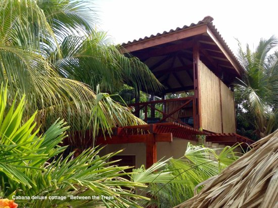 "Bamboo Bali Bonaire Resort: private cabana ""Between the Trees""2"