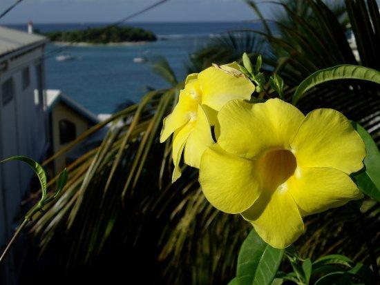 Residence Turquoise - Primeahotels Guadeloupe: Ilet du Gosier