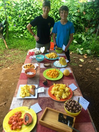 Kilauea, Havaí: A cornucopia of exotic fruit offered at the start of the tour and chocolate tasting.