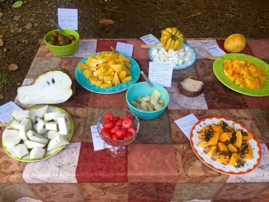Kilauea, Hawái: A cornucopia of exotic fruit offered at the start of the tour and chocolate tasting.
