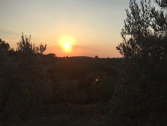 Borgo Collelungo: photo4.jpg
