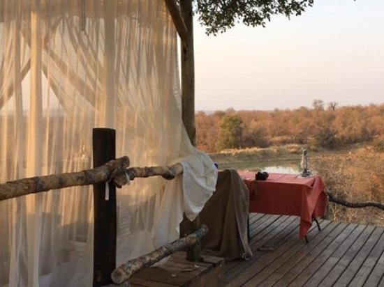 Garonga Safari Camp: photo2.jpg