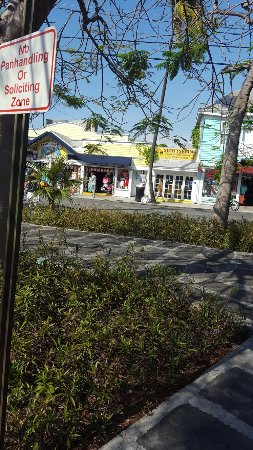 Mango Tree Inn: 20160518_170936_large.jpg
