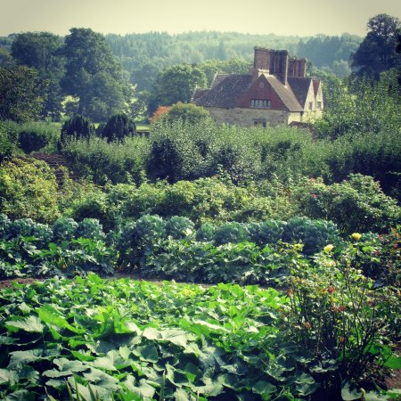 """Burwash, UK: Batemans seen from across the """"Dig for Victoy"""" vegetable patch"""