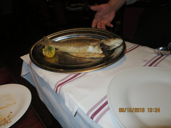 Newtown Square, Pensilvania: Sea Bass pre fillet