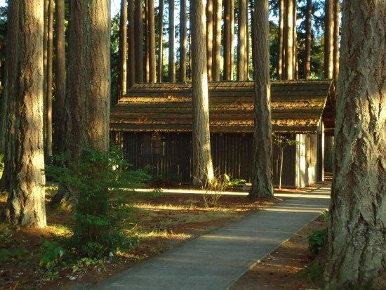 Kitsap Memorial State Park