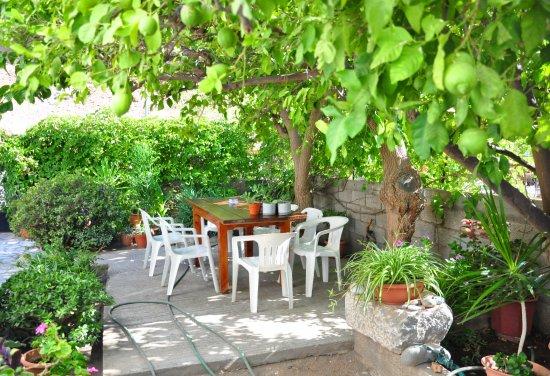Agia Roumeli, กรีซ: Le jardinet des appartements